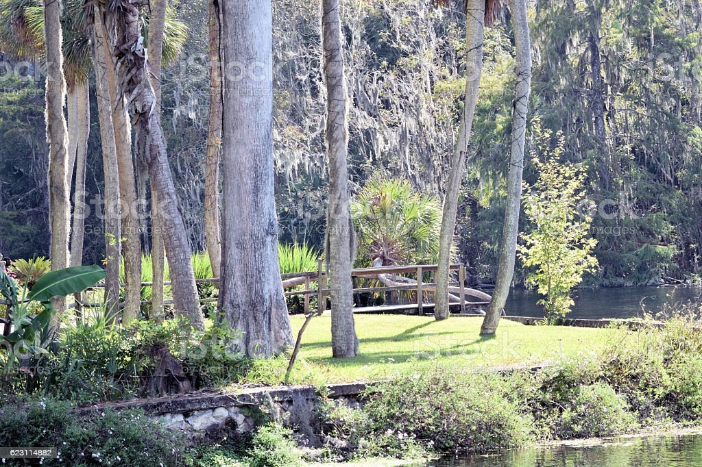 Silver Springs State Park Florida gardens stock photo