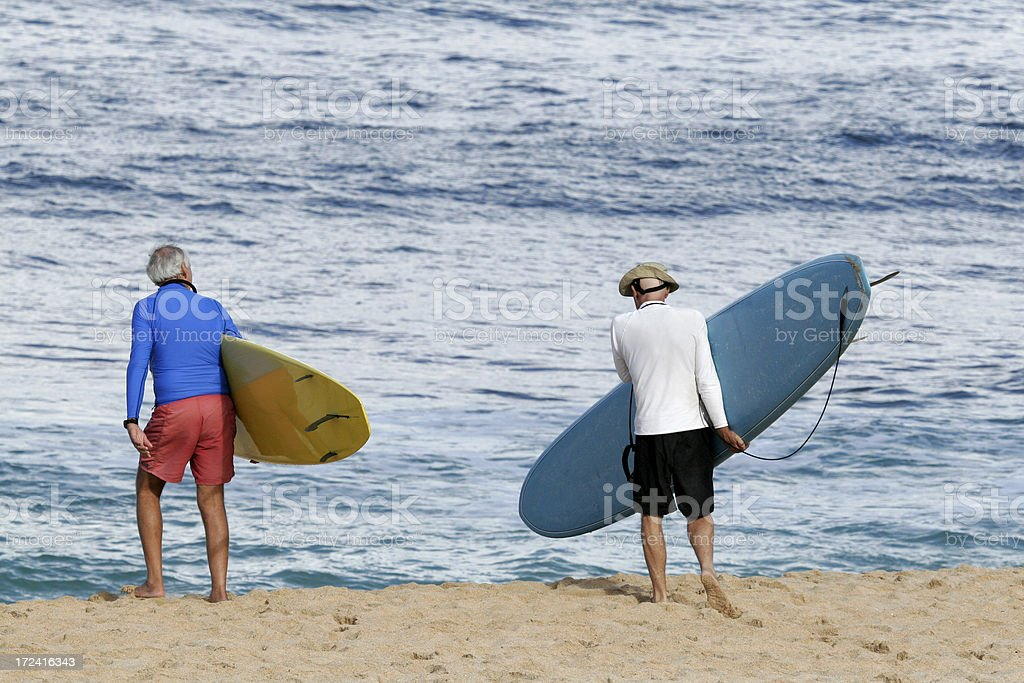 Silver Surfers royalty-free stock photo