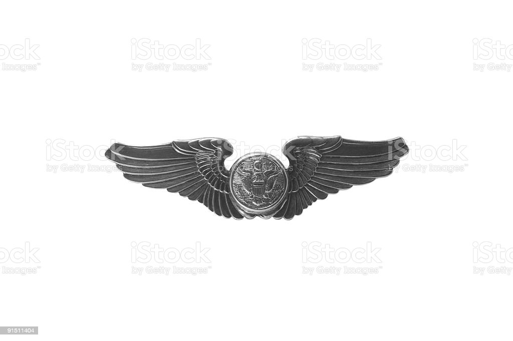 Silver Wings royalty-free stock photo
