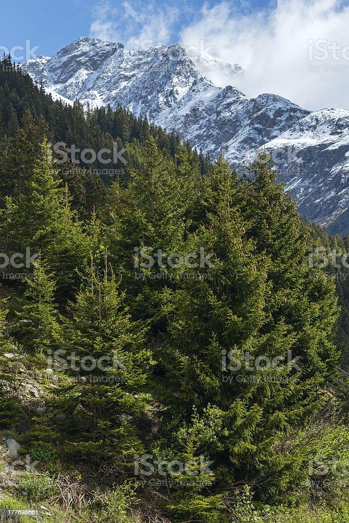 Silvretta Alps summer view, Austria royalty-free stock photo