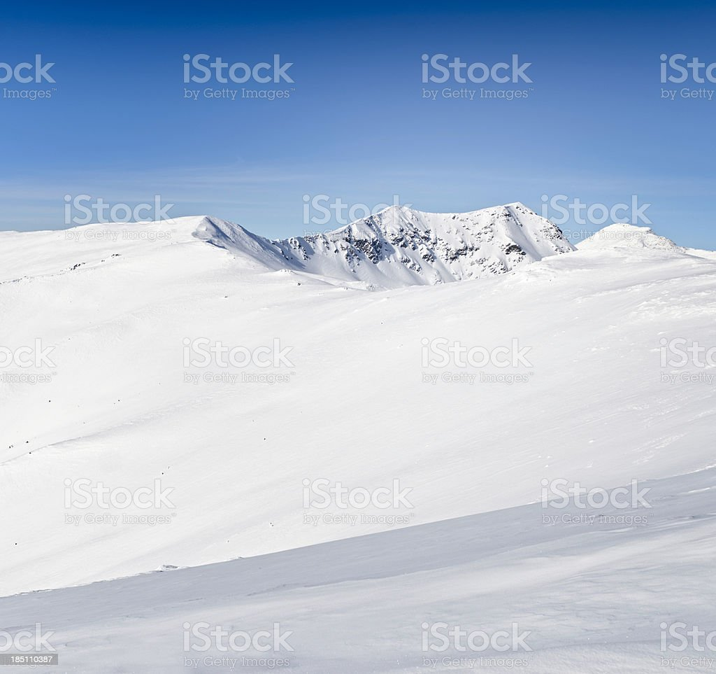simple and beautiful winter landscape royalty-free stock photo