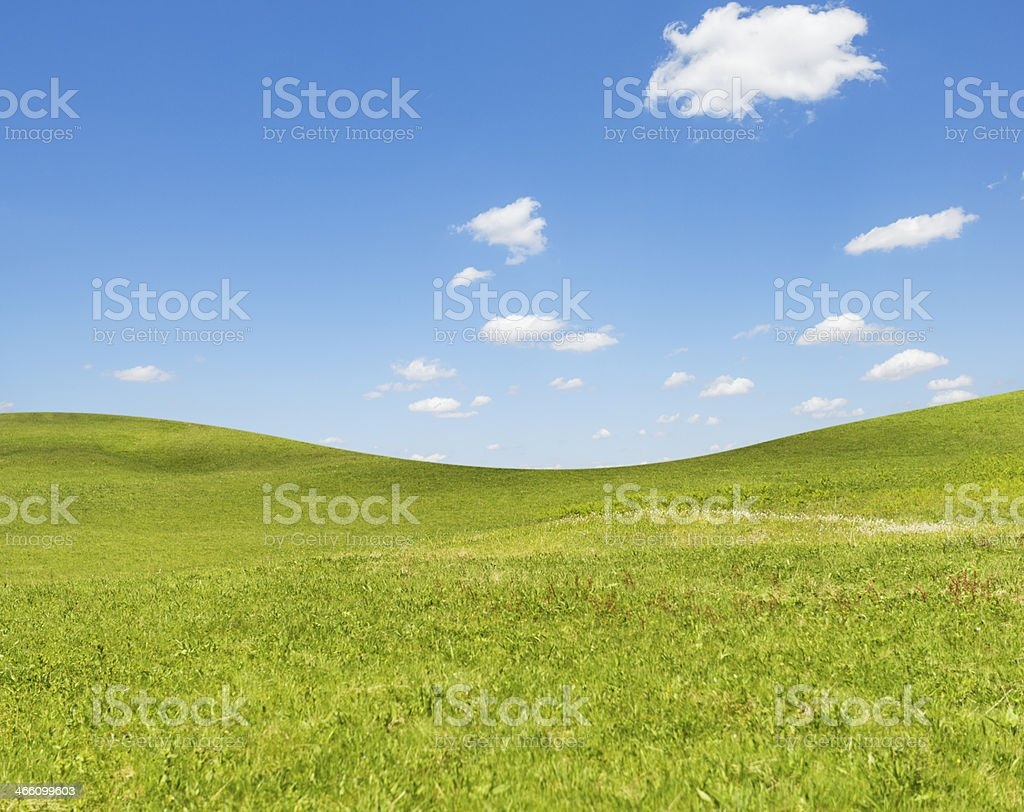 simple green field in spring royalty-free stock photo