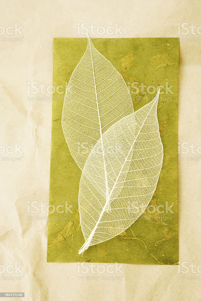 Simple Nature royalty-free stock photo