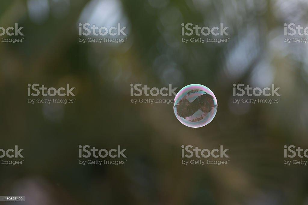 Simplicidade de uma bolinha de sab?o stock photo