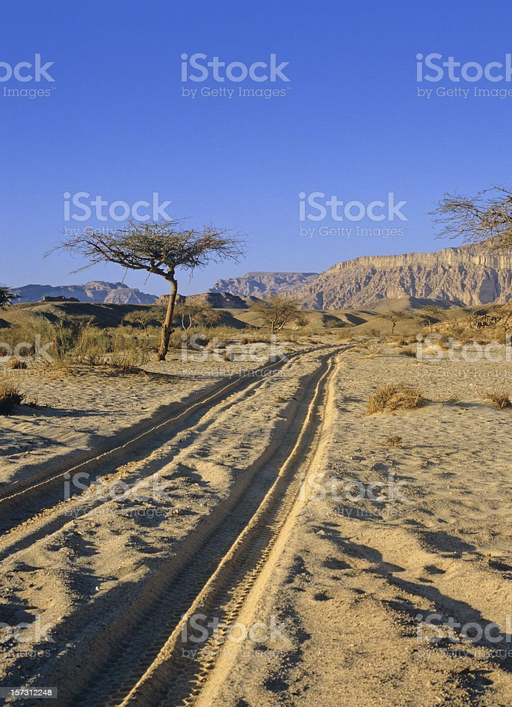 sinai desert   (image size XXL) stock photo