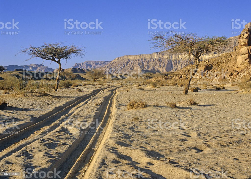 sinai desert royalty-free stock photo