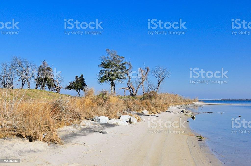 Sinepuxent Bay Beach stock photo