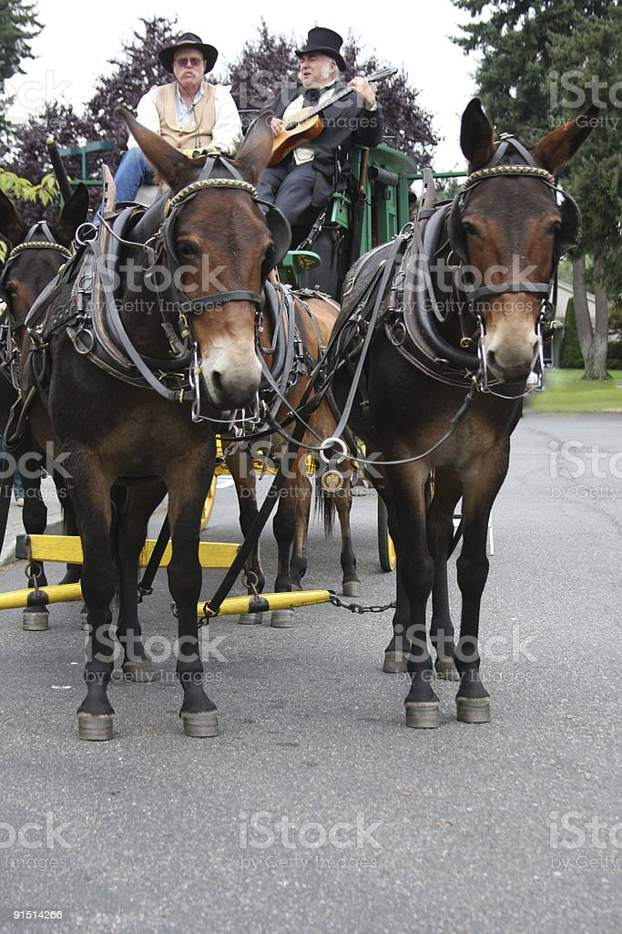 Sing a song on the Stagecoach stock photo