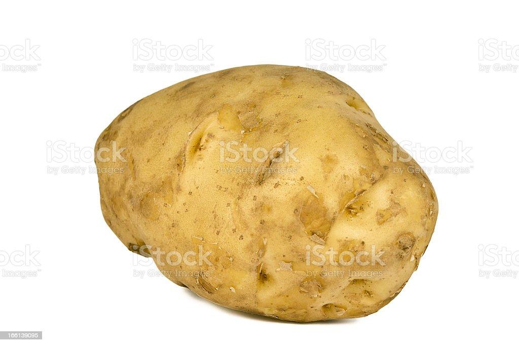 Singal Giant Potato royalty-free stock photo
