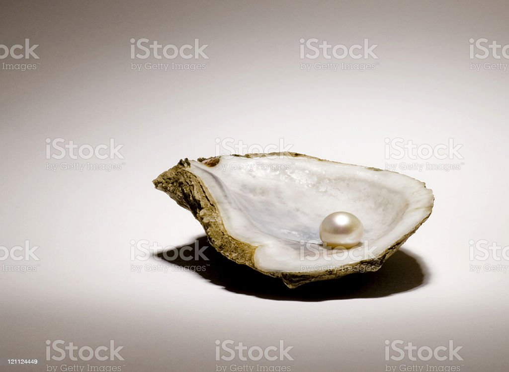 Singe pearl sitting in an oyster shell on a light background stock photo