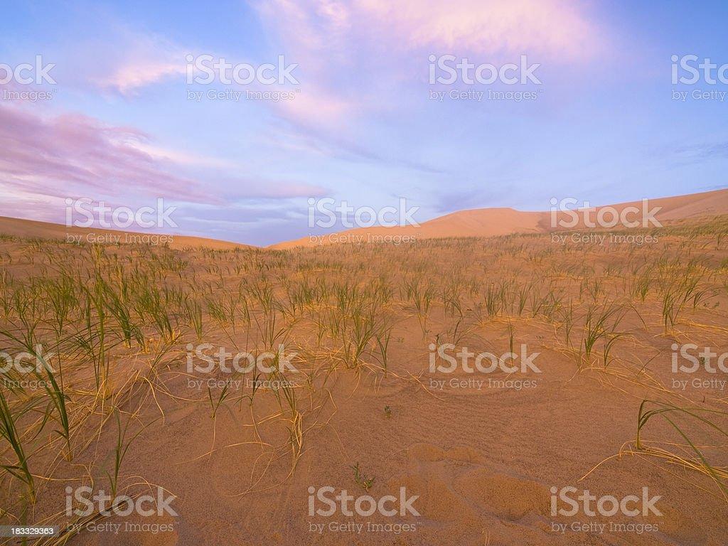 Singing dunes royalty-free stock photo