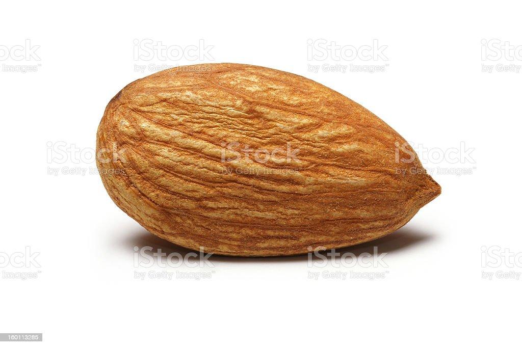 Single Almond stock photo