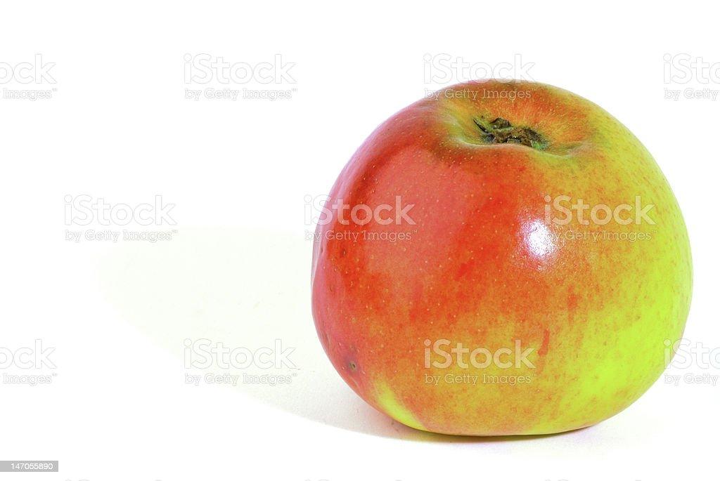 외동 사과나무. 유기농 음식 royalty-free 스톡 사진
