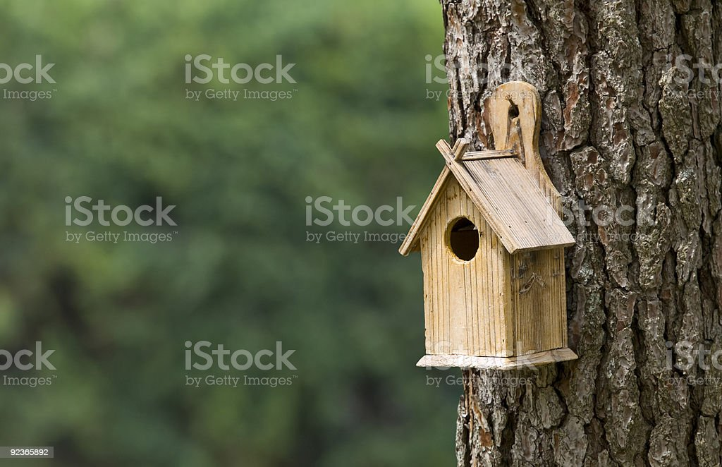 Single bird house attached to a tree stock photo