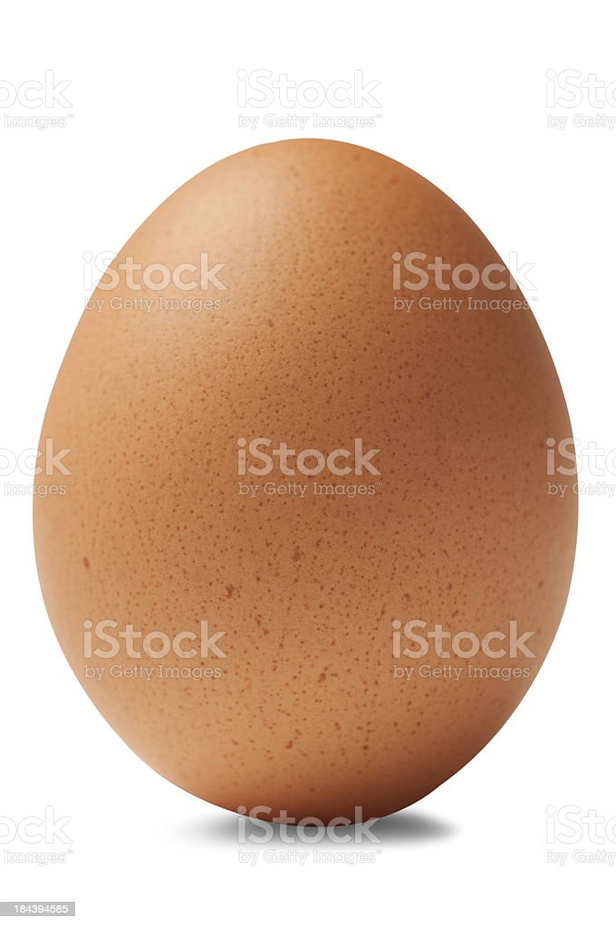 Single brown chicken egg isolated on white background stock photo
