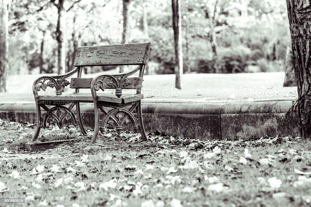 A single chair stock photo