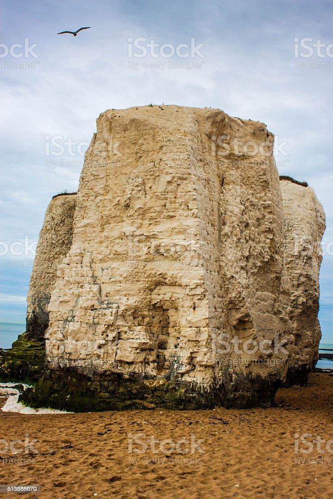 Single Chalk Cliff with Bird stock photo