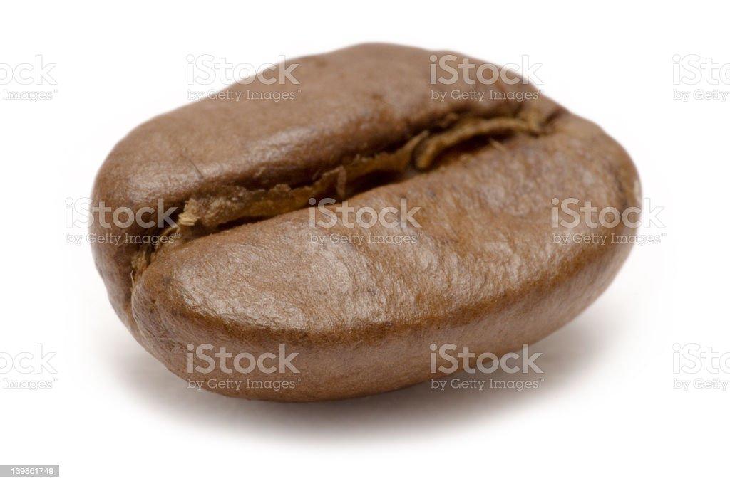 Single Coffee Bean royalty-free stock photo