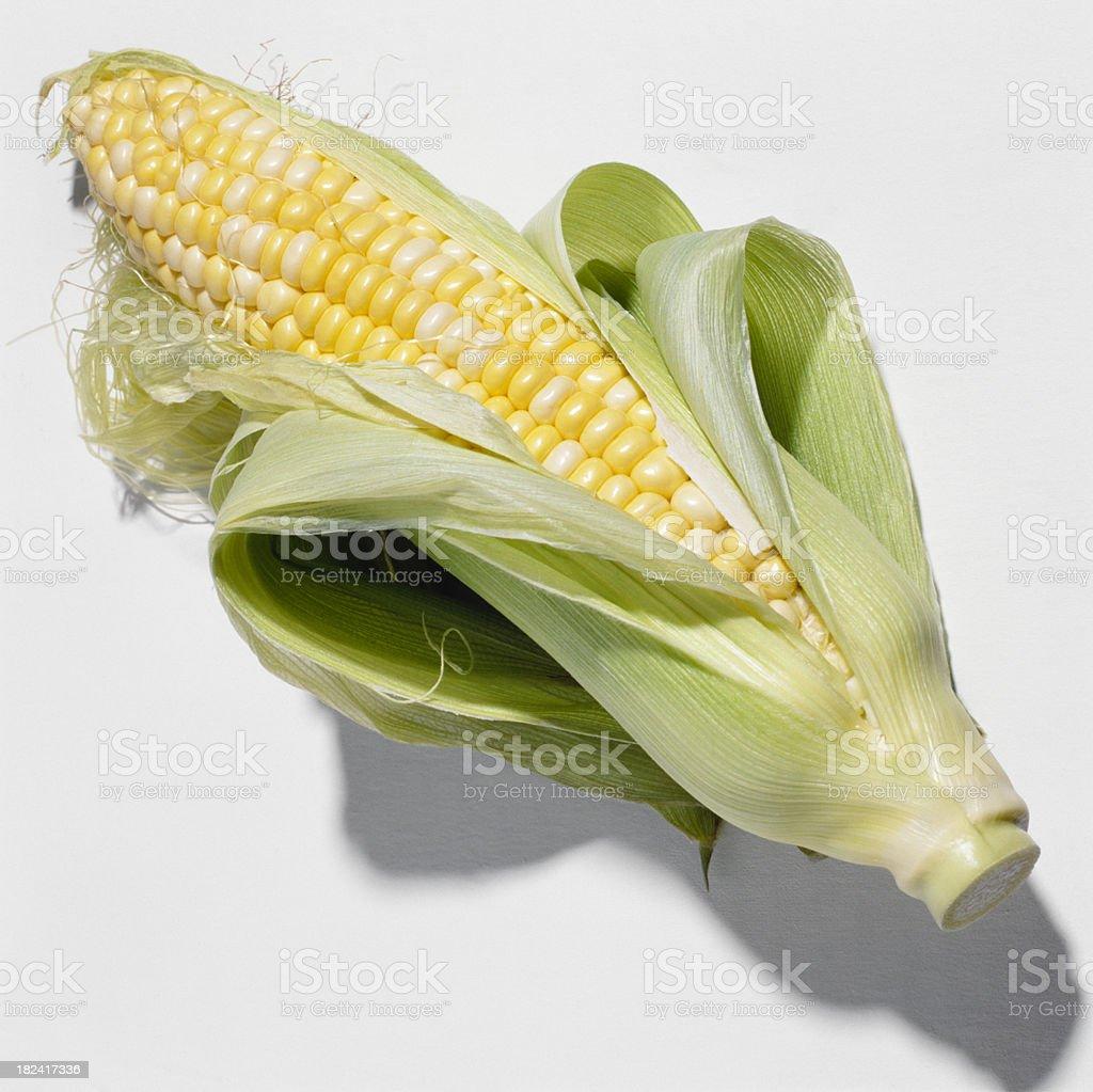 Single Corn on the cob, close-up royalty-free stock photo