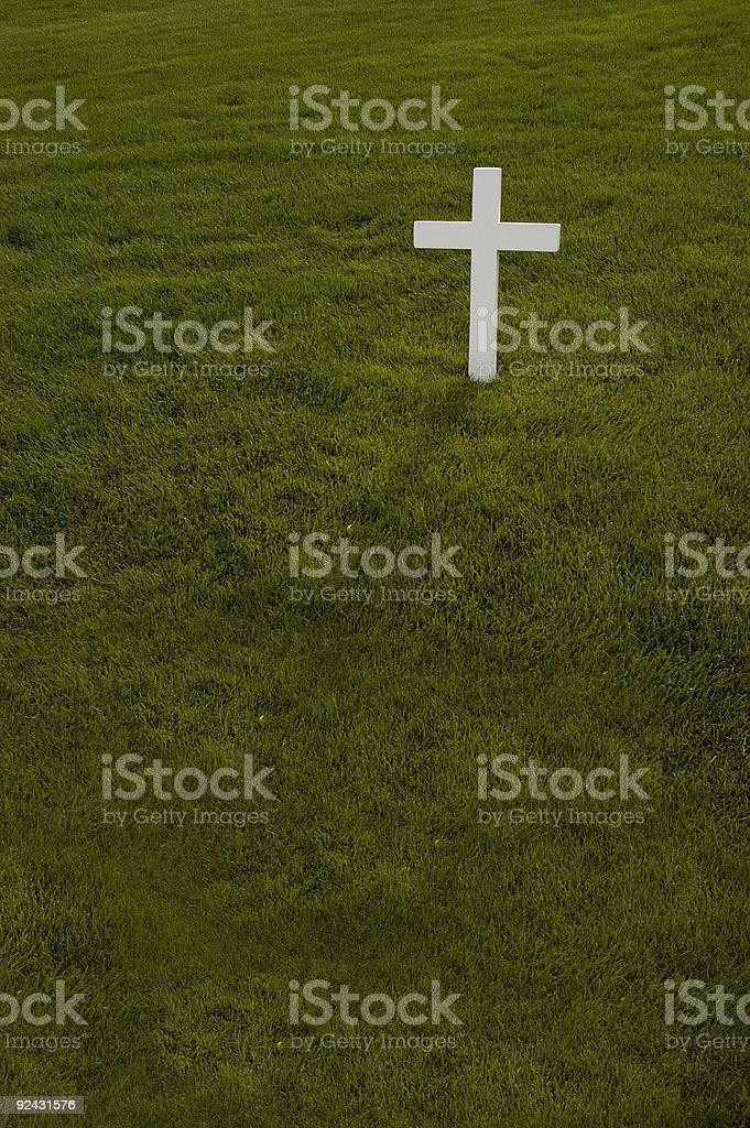Single cross in green grass royalty-free stock photo
