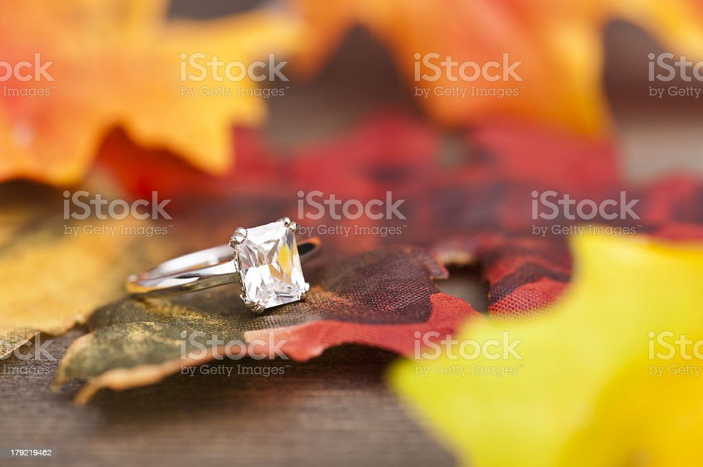 Single diamond engagement ring on a colorful leaf royalty-free stock photo
