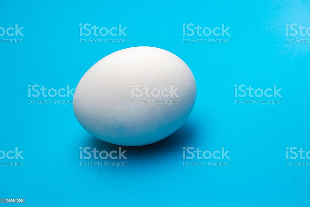 Single egg isolated on blue stock photo