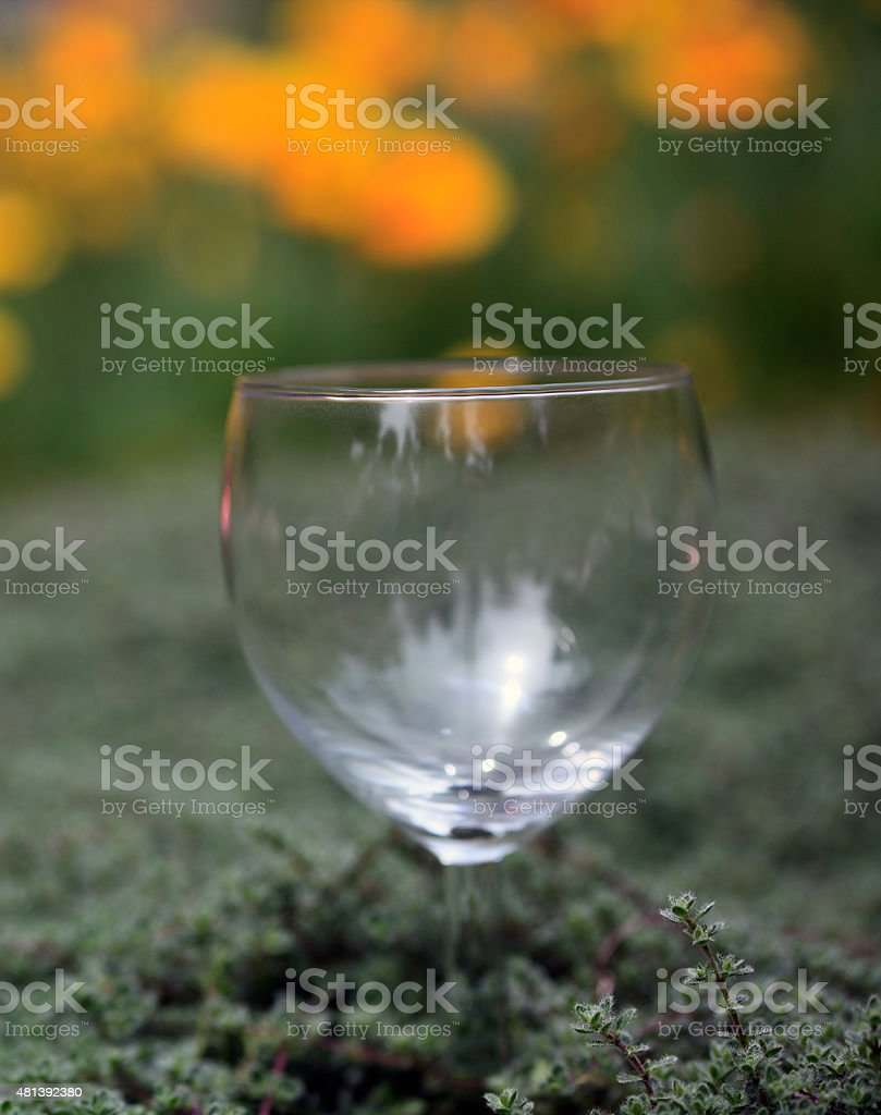 Single Empty Wineglass With Nature Background stock photo