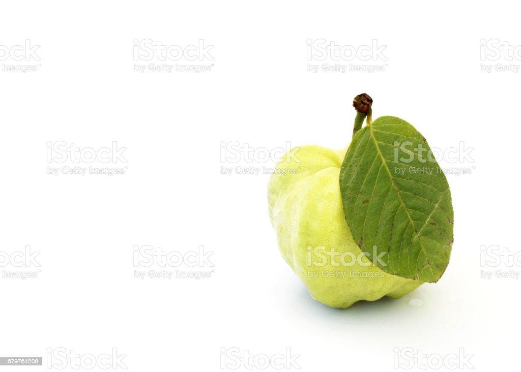 Single fresh guava fruits Isoalted on white background stock photo