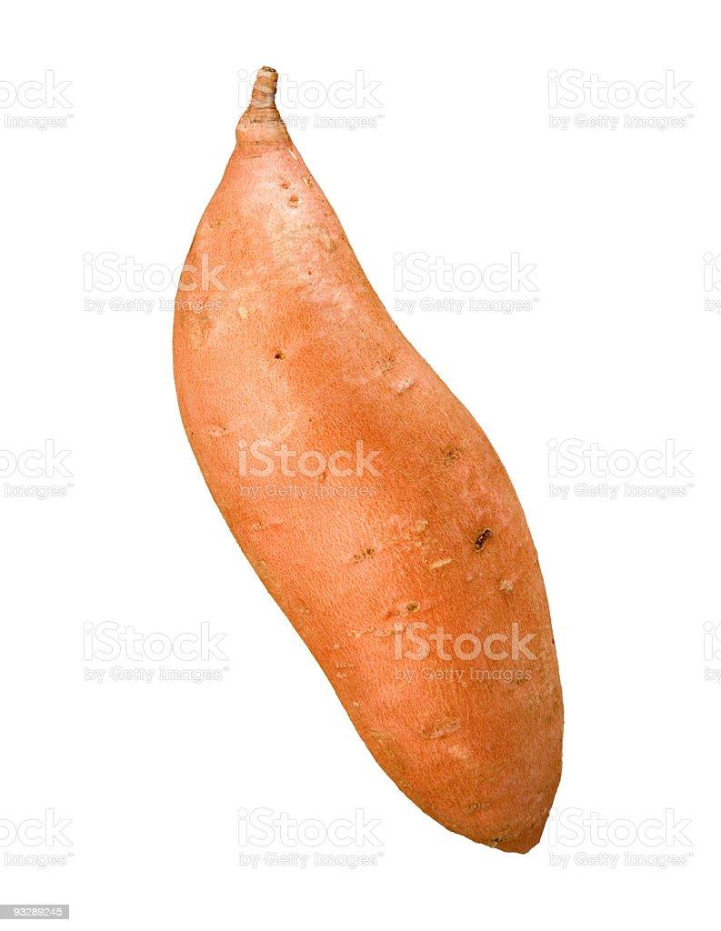 Single Fresh Sweet Potato royalty-free stock photo