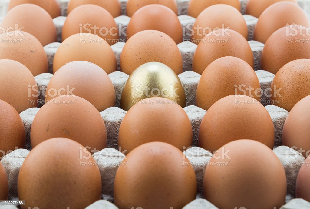 Single gold egg and many normal hen eggs in carton stock photo