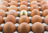 Single gold egg and many normal hen eggs in carton