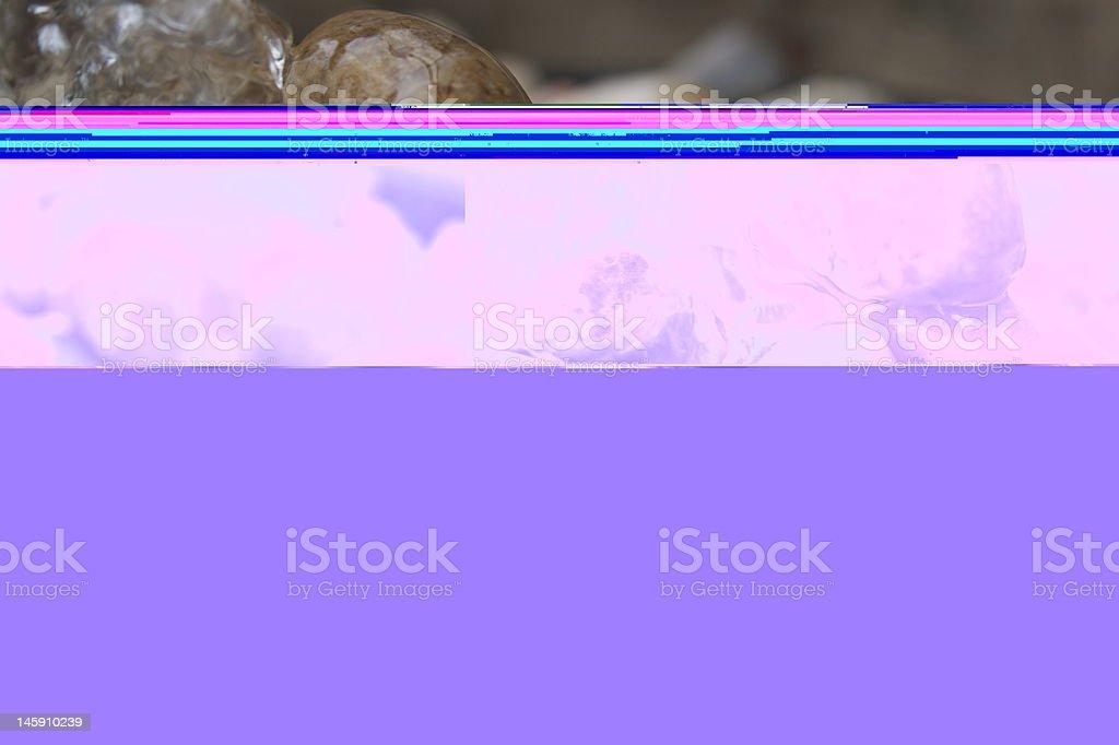 Single grave among thousands royalty-free stock photo
