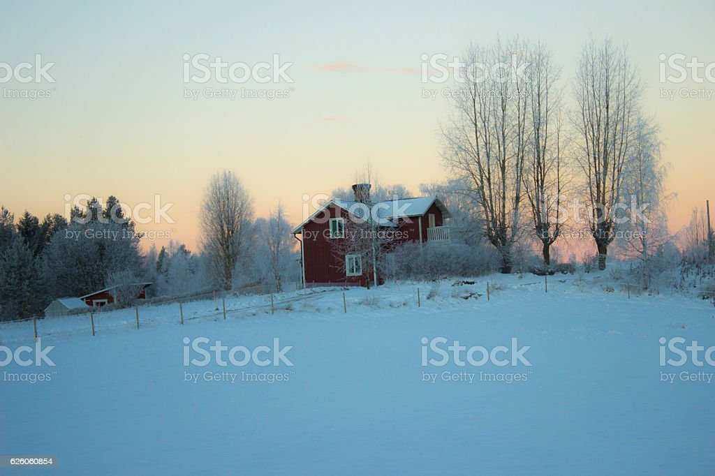 Single House in Winter stock photo