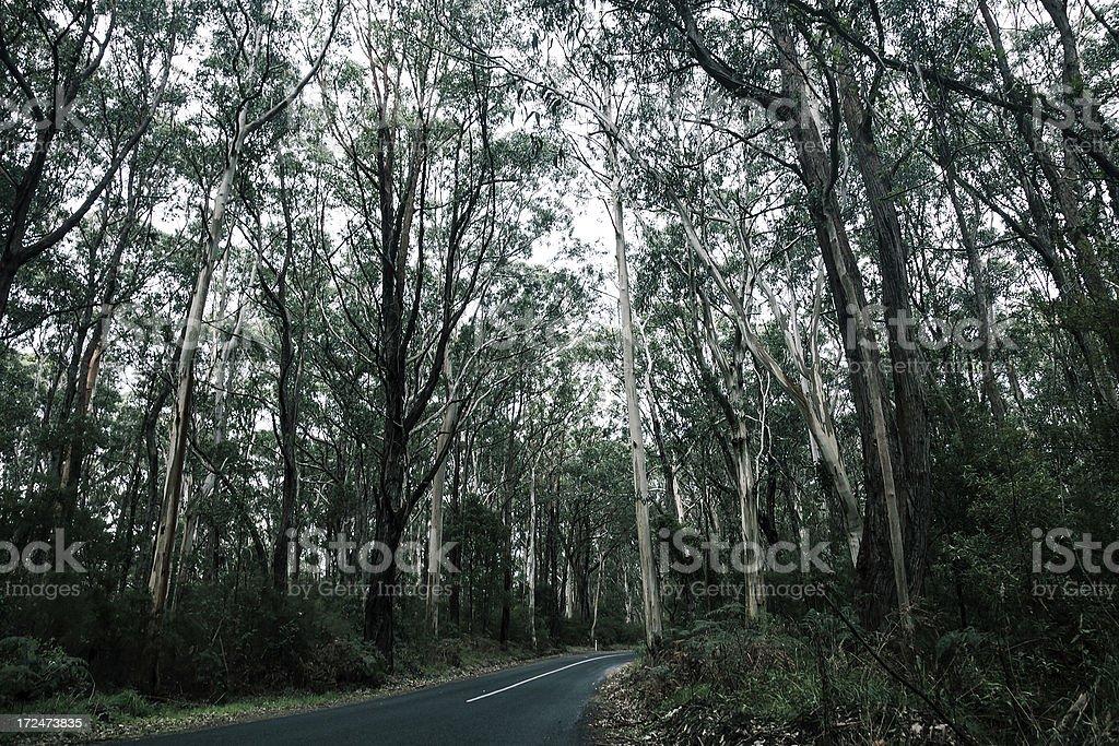 Single lane Road stock photo
