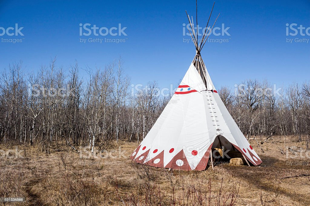 single large white teepee sitting in dead grass stock photo