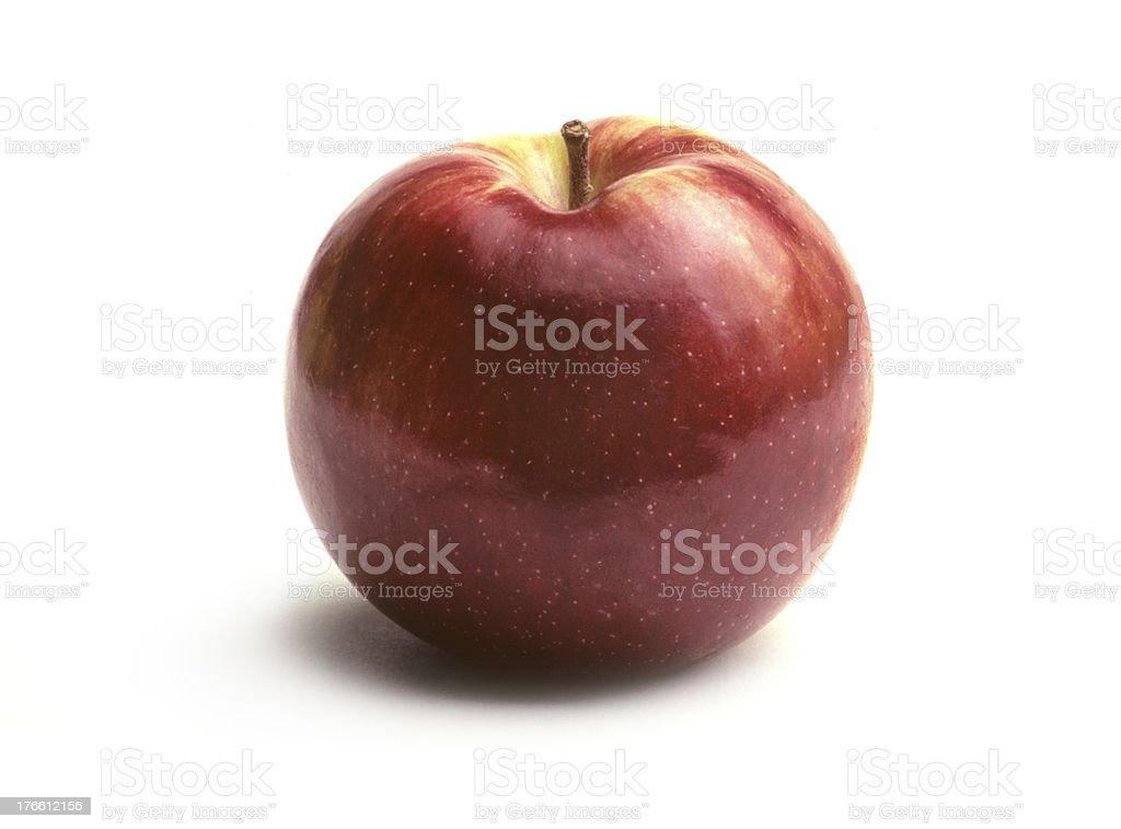 Single MacIntosh Apple on White stock photo