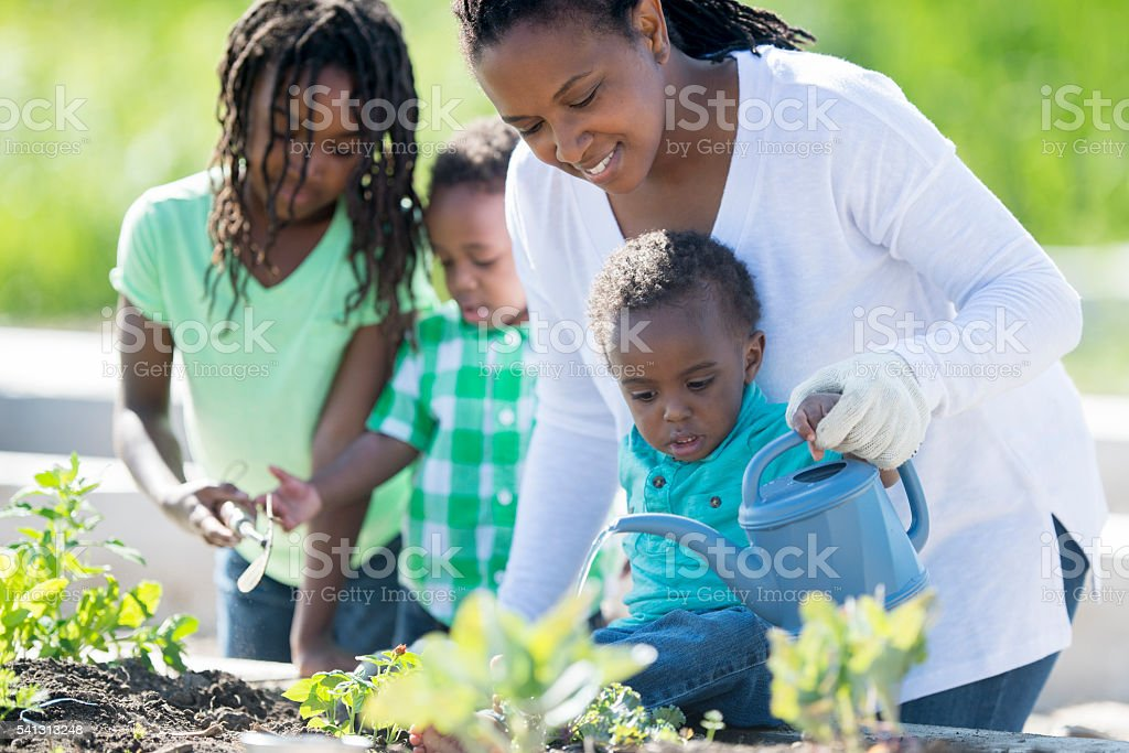 Single Mother Gardening with Her Children stock photo