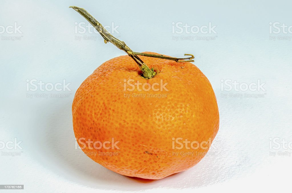 Single Orange stock photo