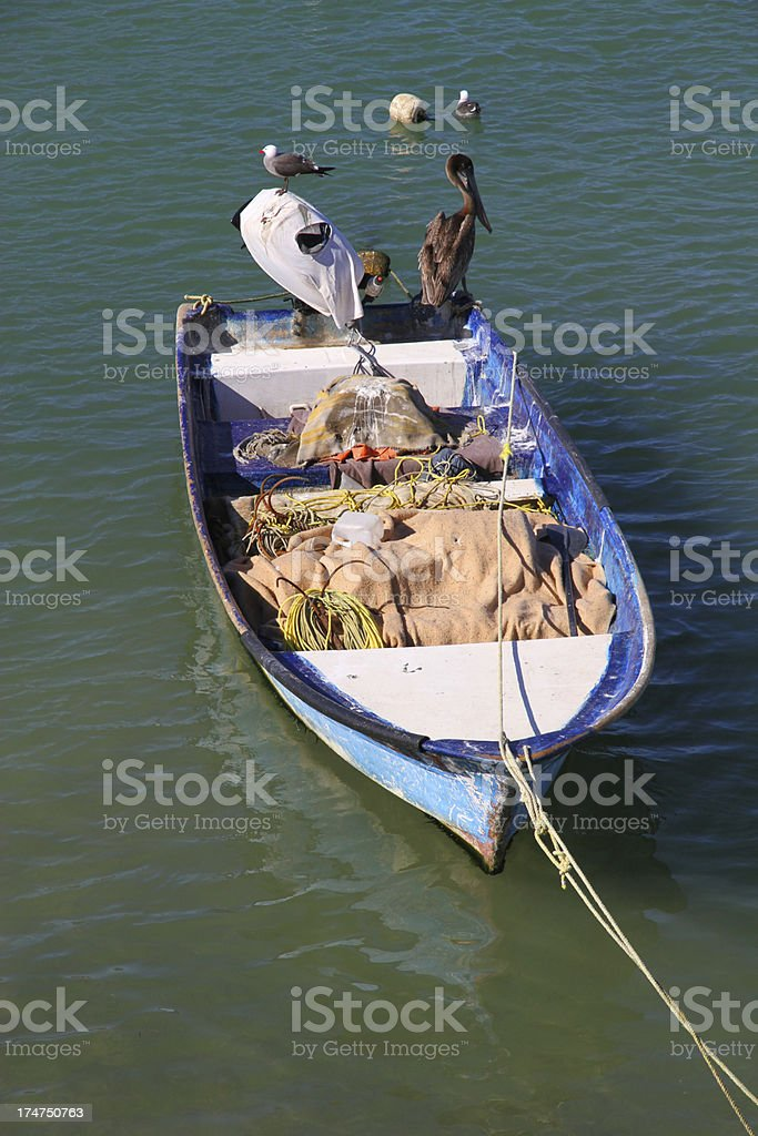 Single Pelican Boat royalty-free stock photo
