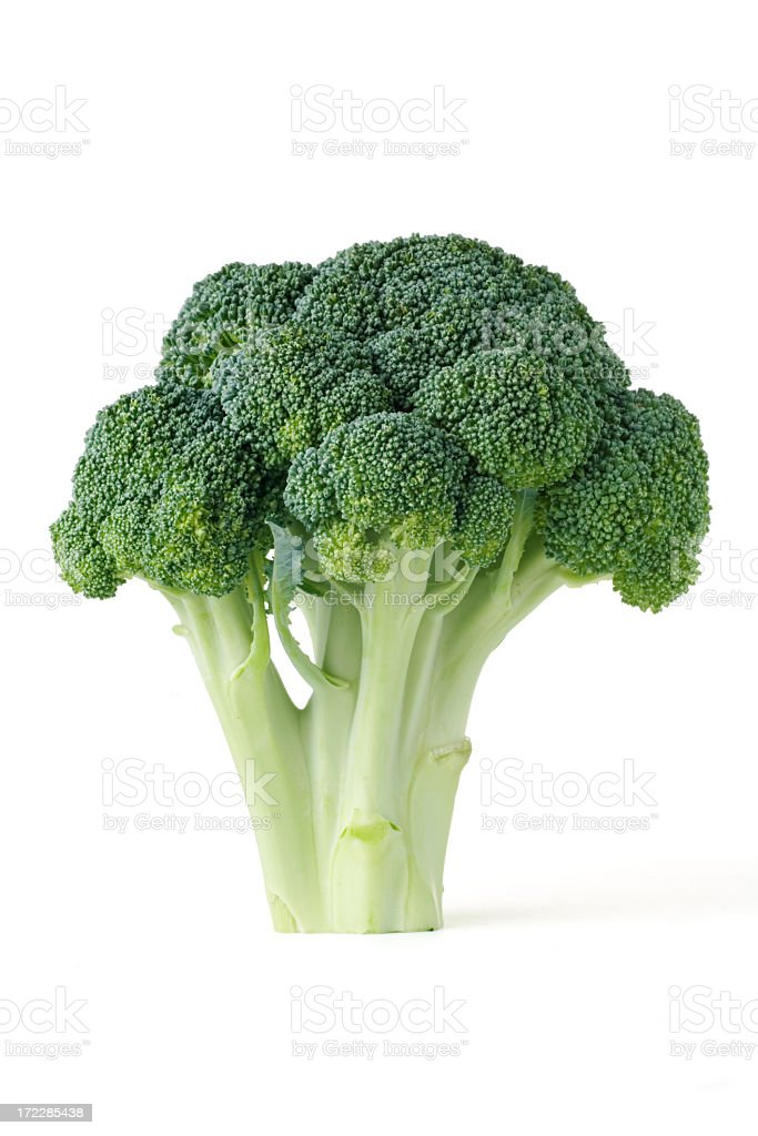 Single piece of broccoli on a white background stock photo