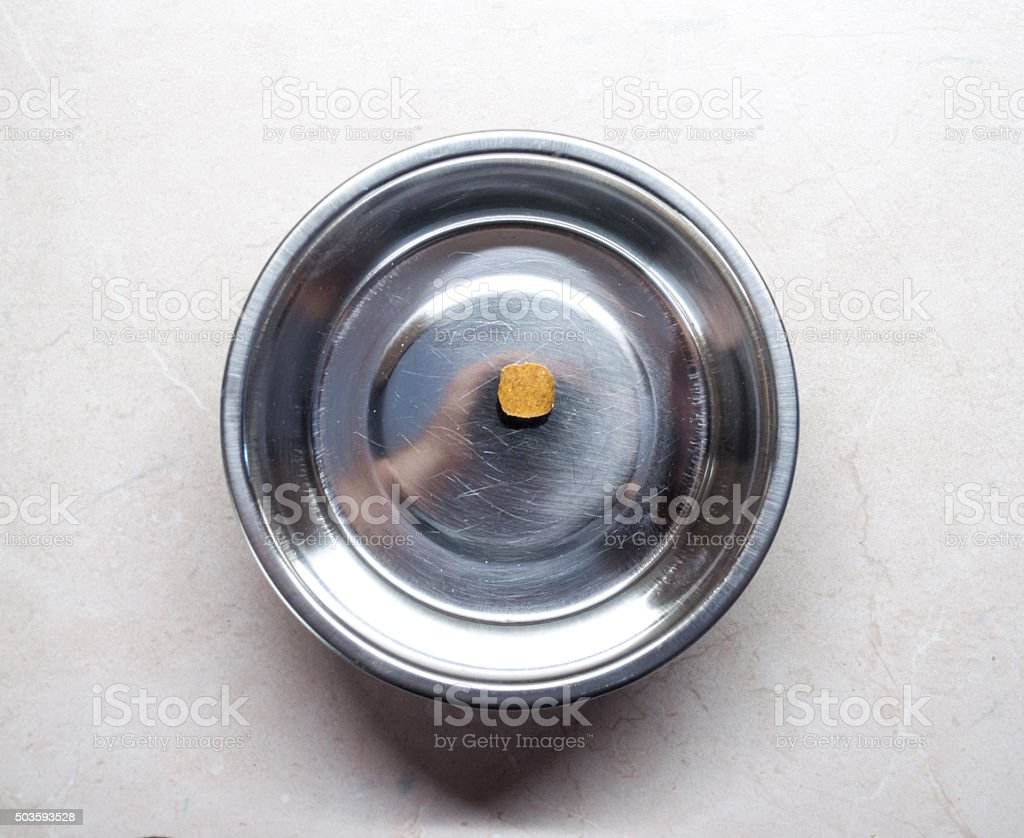 Single Piece of Pet Food in a Bowl Overhead View stock photo