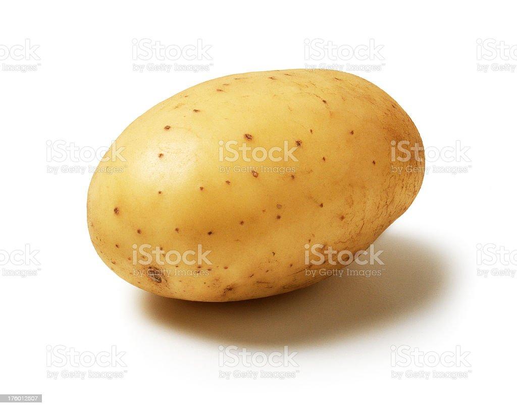 single Potato royalty-free stock photo
