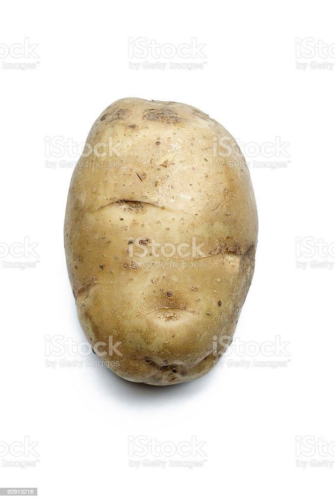Single potato stock photo