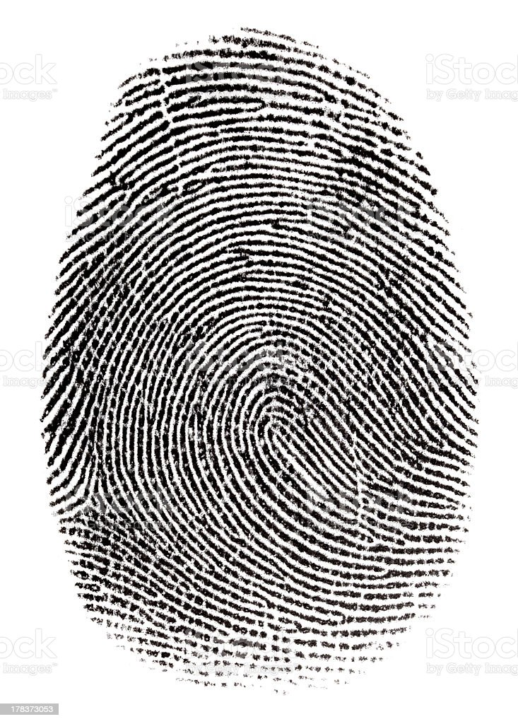 Single real fingerprint on white background stock photo