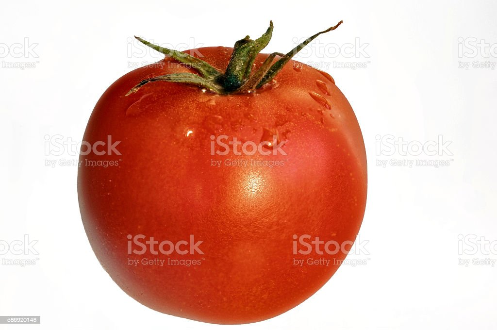 single red ripe fresh tomato for cropping stock photo