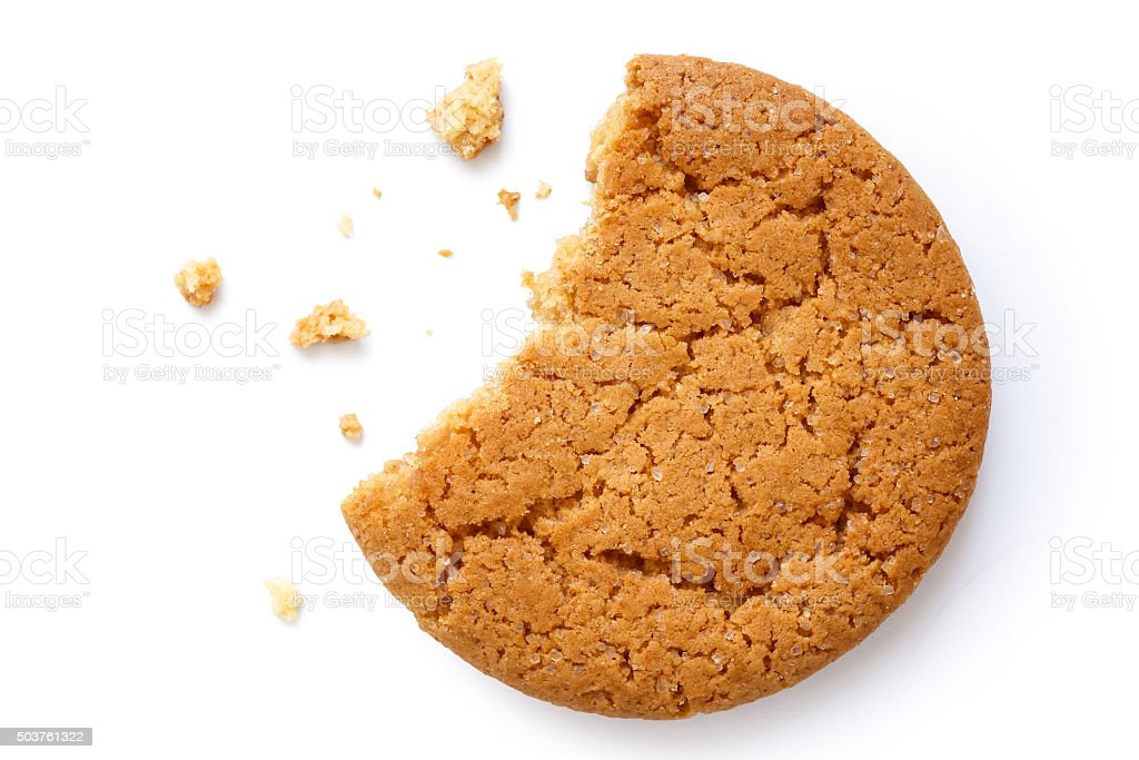 Single round ginger biscuit. stock photo