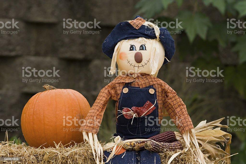 Single scarecrow royalty-free stock photo