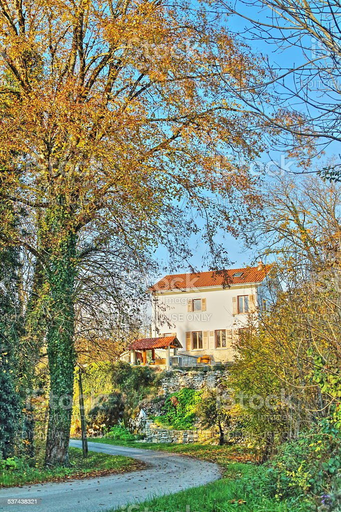 Single small house in forest in autumn stock photo