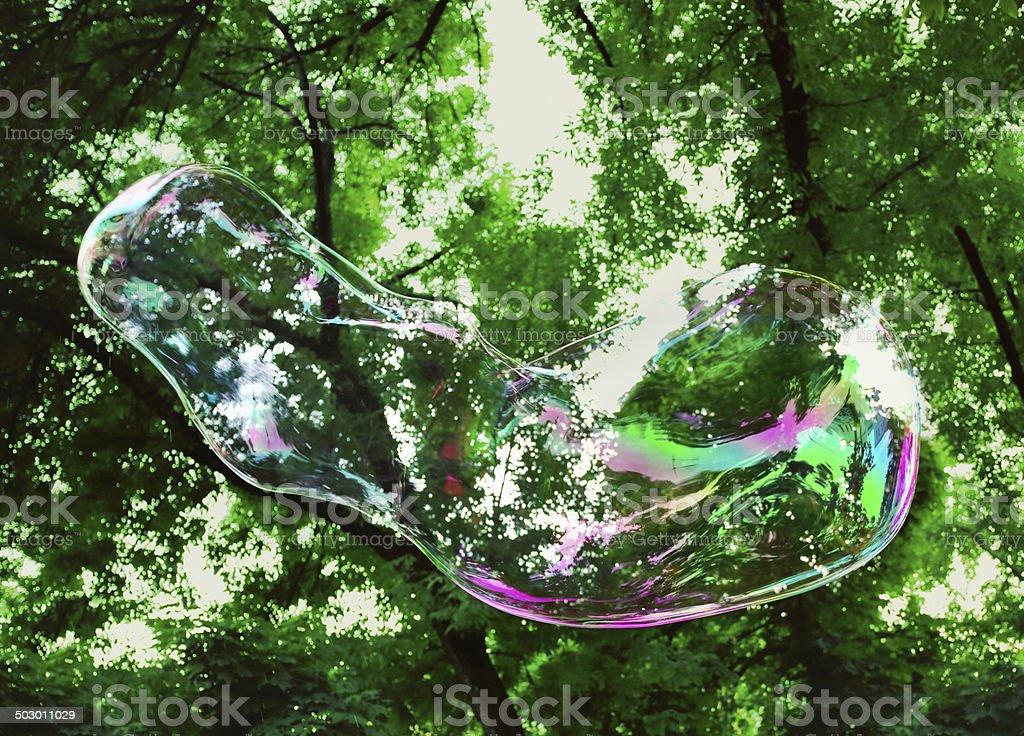 Single soap bubble at nature stock photo