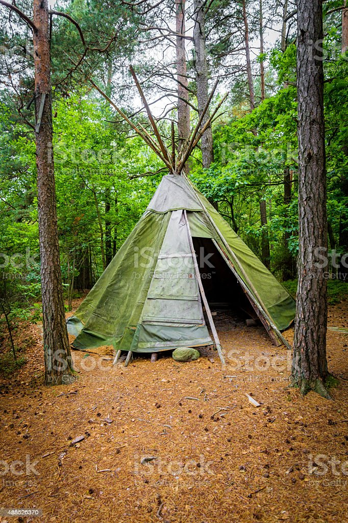 Single teepee in a forest stock photo